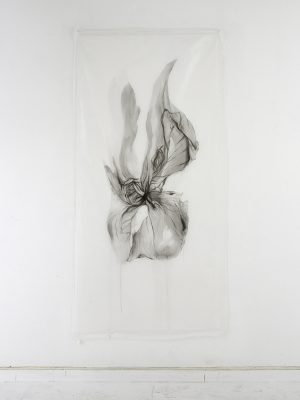 untitled…affior, japanese ink on silk, 100 x 210 cm