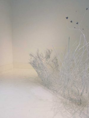 untitled..NowHere, vegetation, linen and wire, 70 x 220 cm