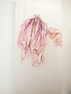 untitiled…osmosis, oil on silk, 100 x 210 cm